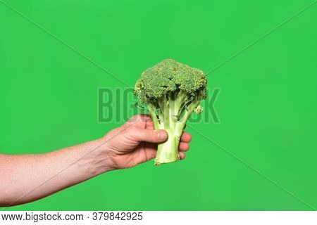 Hand Holding A Broccoli On Green Background