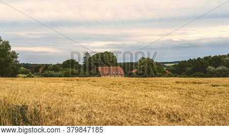 Old Farmhouse In Mecklenburg Western Pomerania With A Cornfield
