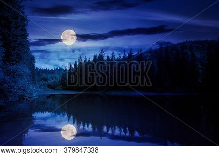 Scenery Around The Lake In Mountains At Night. Spruce Forest On The Shore. Reflection In The Water I