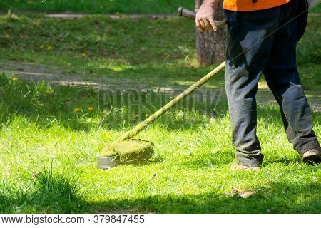 Grass Care With Brush Cutter. Working With Professional Grade Garden Tool In The Park. Using Trimmer