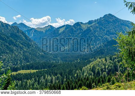 Scenic View Over Mountain Valley With Conifer Forest