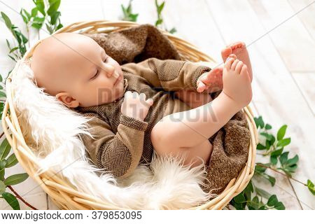 A Small Child A Boy Lies In A Basket Among The Leaves And Plays With His Legs