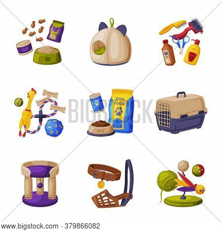 Cats And Dogs Animal Accessories Set, Pet Shop Products, Food, Toys, Accessories For Care Cartoon St
