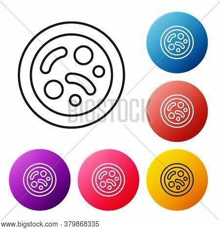 Black Line Bacteria Icon Isolated On White Background. Bacteria And Germs, Microorganism Disease Cau