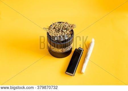 Sativa Thc Cbd. Cannabis Nature Bud. Yellow Background. Marijuana Weed Bud And Grinder.