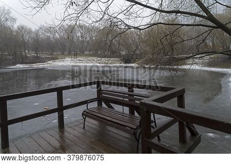 Gloomy Autumn. A Small Pond Covered With First Ice. Overcast, Fog, End Of November. Moscow, Russia.
