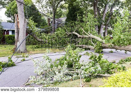 Trees Snapped In Half Knocking Down Electric And Cable Wires From Tropical Storm Isaias In Babylon V