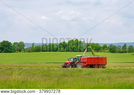 The Harvester Collects Freshly Cut Grass Into A Tractor Trailer.