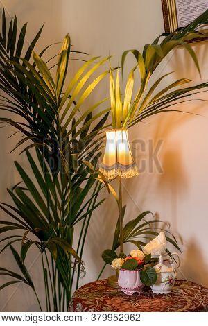 Stylish Compositon Of Retro Home Interior With Vintage Design Lamp, Plants, Elegant Accessories. Min