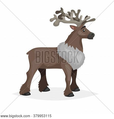 Cute Santding Reindeer. Polar Animal Cartoon Illustration. Flat Style Design. Best For Kid Education