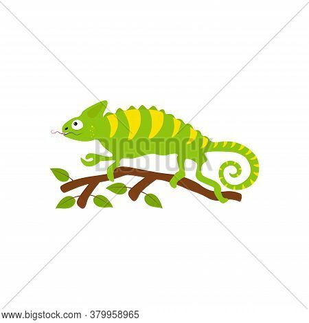Cute Chameleon Sitting On A Tree Branch, Reptiles Illustration. Vector Character In Cartoon Style.