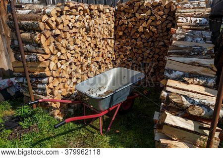 Harvesting Firewood For The Winter. An Empty Cart Stands Near A Pile Of Firewood.