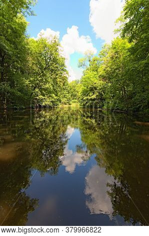 Beautiful Summer Nature Landscape Of Small Pond In The Old Dense Forest In Sunny Day. Blue Sky With