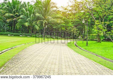 Gray Concrete Block Pavement Walkway Beside Beautiful Fresh Green Carpet Grass Yard, Smooth Lawn And