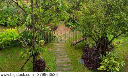 Top View Image, Curve Pattern Of Brown Laterite Walkway In A Tropical Garden, Greenery Fern Epiphyte
