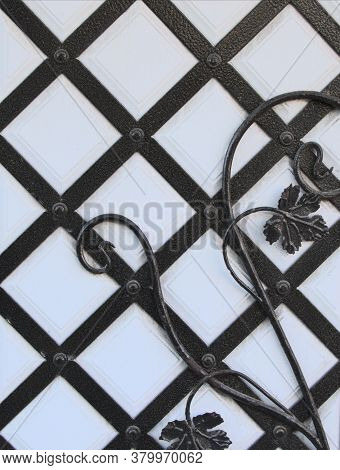 Iron Black Forging On The Door, Textural Background. White Door, With Iron Diamond-shaped Bars. Text