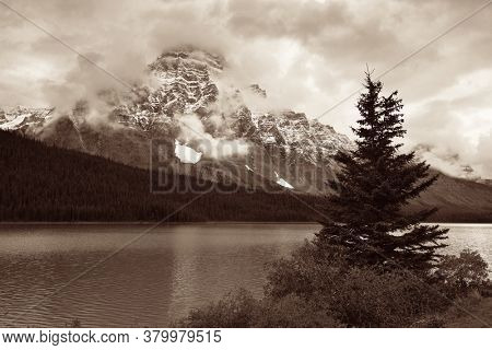 Mountains and forest at Bow Lake with fog in Banff National Park, Canada.