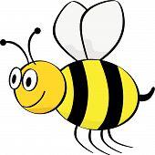 Vector cartoon illustration of a bee flying. poster