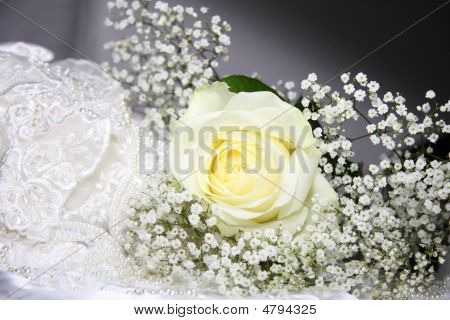 Rose Wedding Background