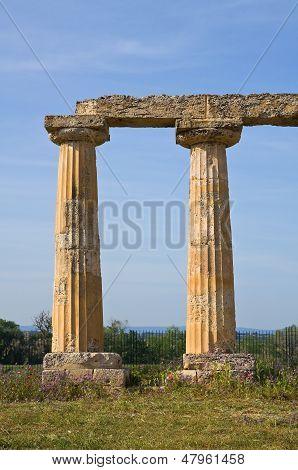 Tavole Palatine of Metaponto. Basilicata. Southern Italy.
