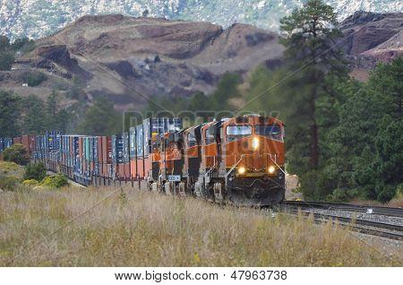 Intermodal freight train