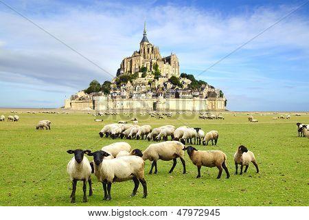 Die Abtei Mont Saint-Michel.