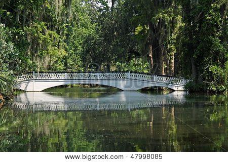 Bridge Over Pond
