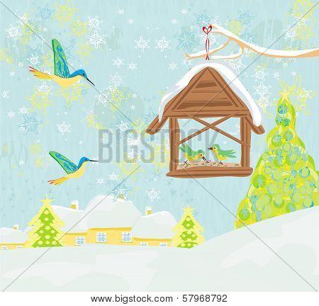 Birdfeeder In Winter