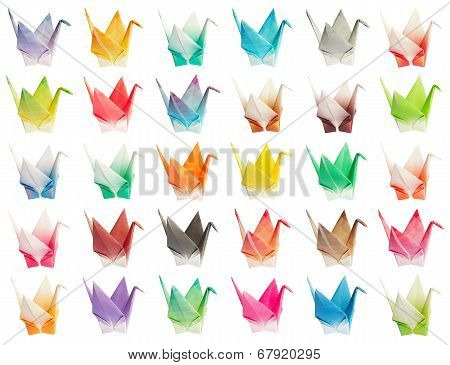 Origami Birds Chart