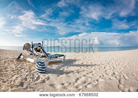 Tropical Maldives beach - Vacation Concept