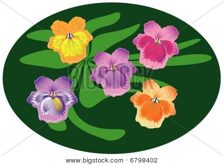 A small bunch of pansies