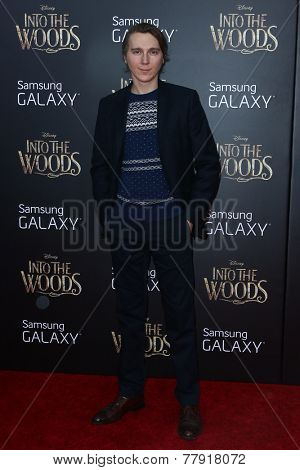 NEW YORK-DEC 8: Actor Paul Dano attends the