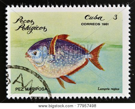 CUBA - CIRCA 1981: A Stamp printed in Cuba shows a moonfish with the inscription