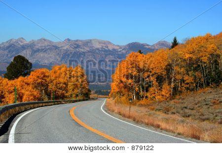 Road To Galena Summit 3