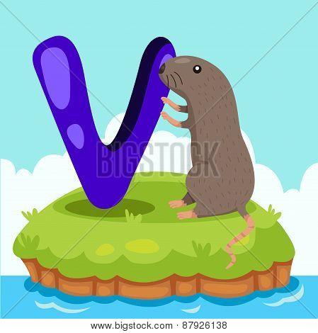 Illustrator of Letter 'V is for vole'