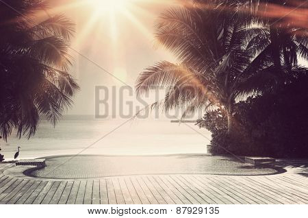 Bright sunburst over a luxury tropical infinity pool framed with palm trees overlooking the ocean on the island of Maldives in a travel concept poster