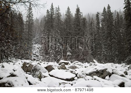 Zyuratkul National Park, Climb To The Top Of Big Bitch On The Rocks
