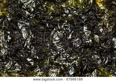 Laver seaweed sheet roasted isolated with white background