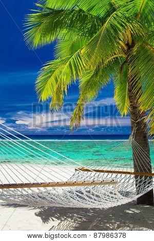 Empty hammock between palm trees on tropical beach of Rarotonga, Cook Islands