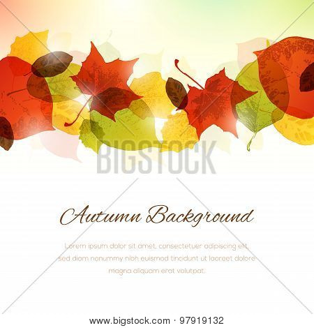 Background With Autumn Leaves At The Top And Copy Space At The Bottom