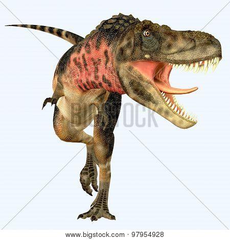 Tarbosaurus Carnivore Dinosaur