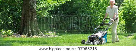 Old Gardener With Lawnmower