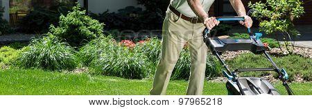 Horticulturist Tending Lawn