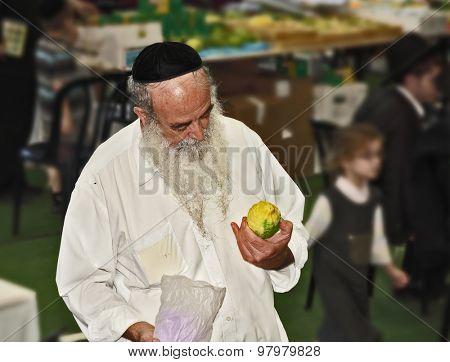 BNEY-BRAK, ISRAEL - SEPTEMBER 17, 2013: Big market on the eve of the Jewish holiday of Sukkot. The handsome elderly man with gray-haired beard and in skullcap chooses a citrus