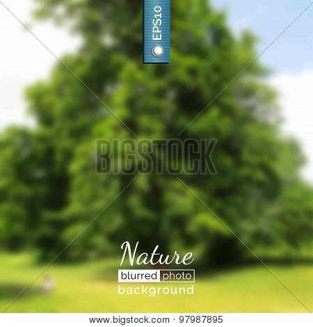 Blurred photo background.