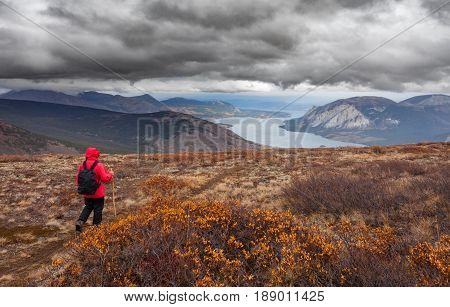 Hiking Rainy Autumn Fall Boreal Alpine Tundra Path