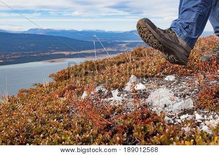 Hiking boot of Hiker hiking in alpine tundra high above Little Atlin Lake near Tagish Yukon Territory Canada