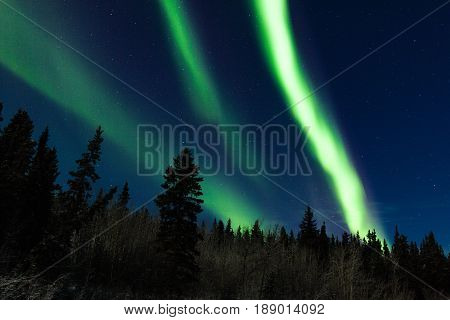 Bright Aurora Borealis Northern Lights