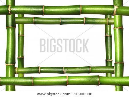 Bamboo stems frame border