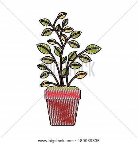 color crayon stripe silhouette of plant pot vector illustration